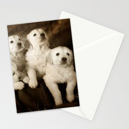 Cute labrador puppies Stationery Cards