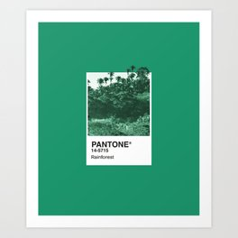 PANTONE SERIES – RAINFOREST Art Print