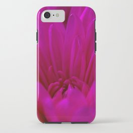 Pink  Chrysanthemum  iPhone Case