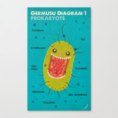 Germusu Prokaryote Diagram Canvas Print