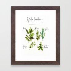 hierbas aromaticas Framed Art Print