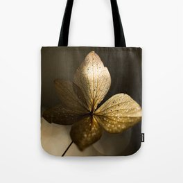 Autumn Scene - Dry Petals with Golden Sunset Light #decor #society6 #buyart Tote Bag