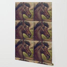 Vintage Horse Illustration (1893) Wallpaper