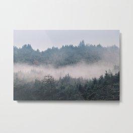 Misty forest Wicklow Mountains Ireland Metal Print