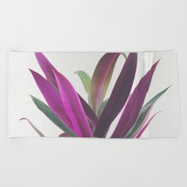 Boat Lily Beach Towel