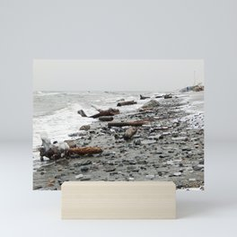 Driftwood Beach after the Storm Mini Art Print