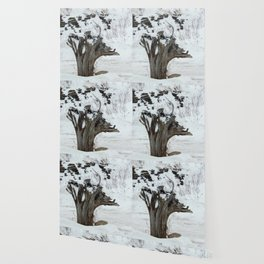 Stumpy and the Rock Wall in Winter White Wallpaper
