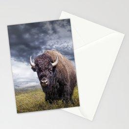 Plains Buffalo on the Prairie Stationery Cards