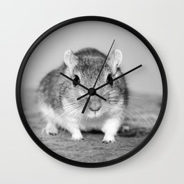 Gerbil , Black and white Wall Clock