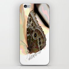 Bulls Eye Butterfly iPhone & iPod Skin