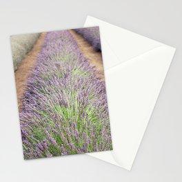 Lavendar Farm Stationery Cards
