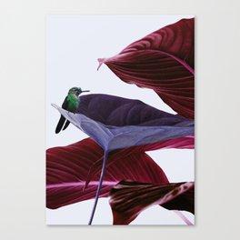 Pink leaf Canvas Print