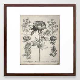 Antique floral black and white chinoiserie flower vintage Paris flowers French botanical goth print Framed Art Print