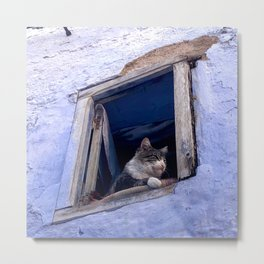 King Kitty, Chefchaouen, Morocco Metal Print