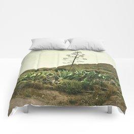 Le Nouveau Western Comforters