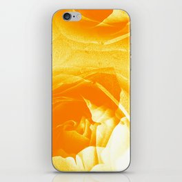 Golden Roses iPhone Skin