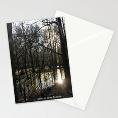 shadows & reflections Stationery Cards