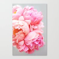 peonies Canvas Prints featuring Peonies Forever by Ez Pudewa