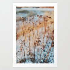 winterlight Art Print
