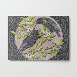 Celtic Starlings Metal Print