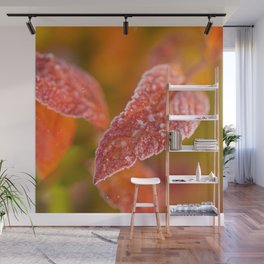 Frosty Red Leaves In The Morning Of October  Wall Mural