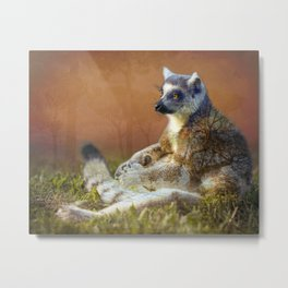 Lemur's wish Metal Print