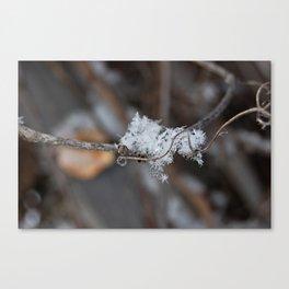 Delicate Snowflake Canvas Print