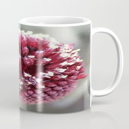 Macro of Round-Headed Leek Flower Allium Sphaerocephalon Coffee Mug