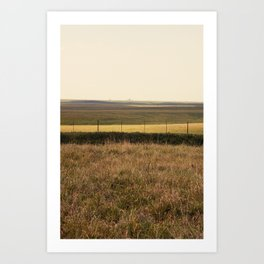 Varied Prairie Art Print