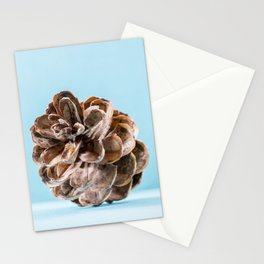 Cone Stationery Cards