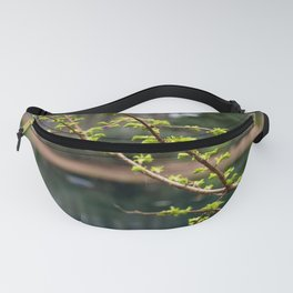 Signs of Spring Fanny Pack