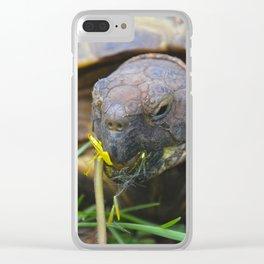 Pretty Clear iPhone Case