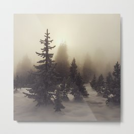 Sunlight, Frost and Steam Metal Print