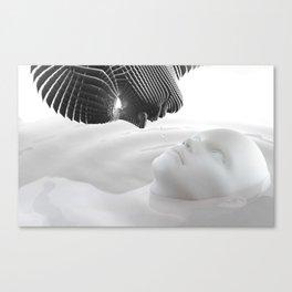Antvardan Canvas Print