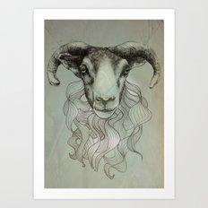 sheeps heid Art Print