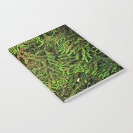 Boughs Notebook