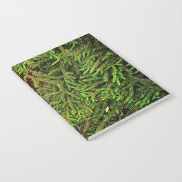 Boughs Notebook
