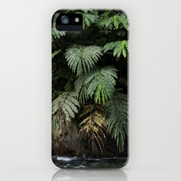 Mysterious leaves, in the lush jungles of Sumatra, Indonesia iPhone Case