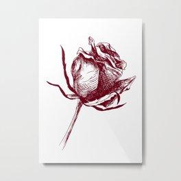 Drawing a rose Metal Print