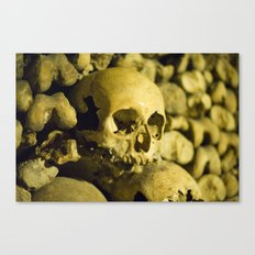 Wall of Bones Canvas Print
