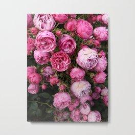 Victorian Roses Metal Print