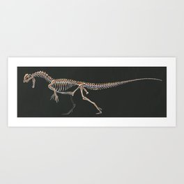 Dilophosaurus Wetherilli Skeleton Study (No Labels) Art Print