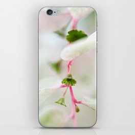 Tiny Trumpet Flower iPhone Skin