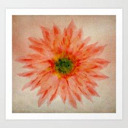 salmon flower Art Print
