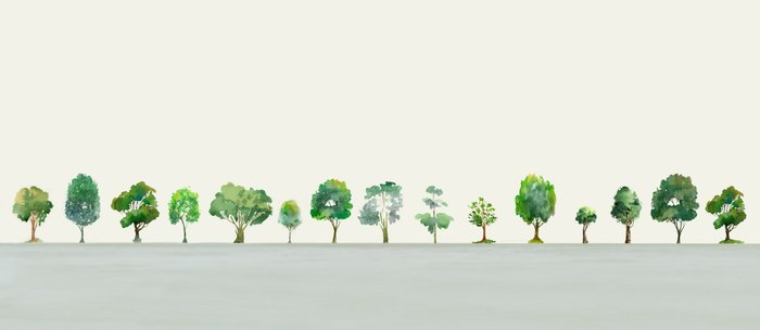 A Row Of Trees Kaffeebecher