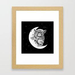 The Nocturnal Framed Art Print