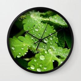 Regentropfen Wall Clock