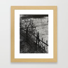 Forgotten Fence Framed Art Print