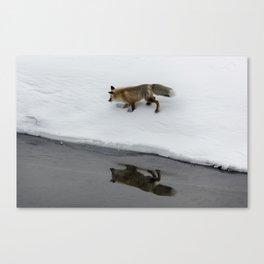 Carol M. Highsmith - Hunting Fox Canvas Print