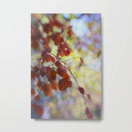 Dreaming on a Summer Day abstract nature photo Metal Print